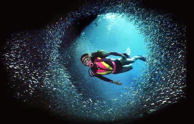 大海具有神秘的魅力,特别是夏天,相信没有人不为大海所动容:冲浪、海底漫步、海上垂钓、潜水一切与神奇的海洋世界零距离接触的活动都令人向往,而潜入深海, 更是探索海底世界、享受海底美景的最直接方法。   推荐理由:塞浦路斯是一个拥有悠久历史文化和壮观自然美景的岛国。它位于地中海东北角,北邻土耳其,南接埃及,是地中海第三大岛屿,仅次于西西里和萨丁亚岛。   走进塞浦路斯,如同跨进了古希腊的优美神话中,这里是神话中断臂美人维纳斯的故乡,被人们骄傲地称为爱神之岛,而且也有太阳神阿波罗的神庙遗址,有人称它为